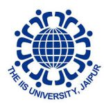 I.I.S. University